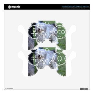 Bergamasco Shepherd Dog PS3 Controller Skins