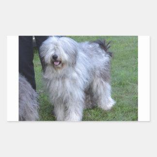 Bergamasco Shepherd Dog Rectangular Sticker