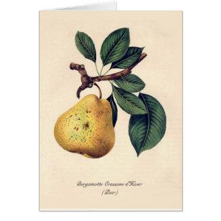 Bergamotte Crassane d'Hiver (Pear) Card