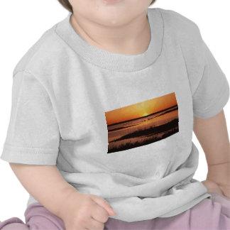 Bergantín NWR en Sunset.jpg Camisetas