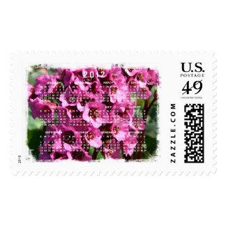 Bergenia Blossom; 2012 Calendar Postage