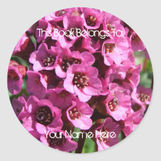 Bergenia Blossom Classic Round Sticker