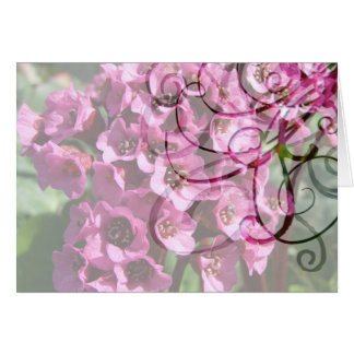 Bergenia Blossom; No Text Card