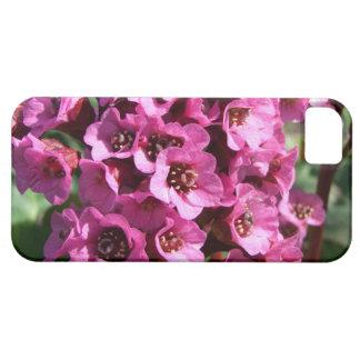 Bergenia Blossom; No Text iPhone SE/5/5s Case