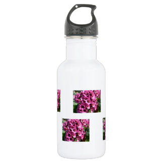Bergenia Blossom; No Text Stainless Steel Water Bottle