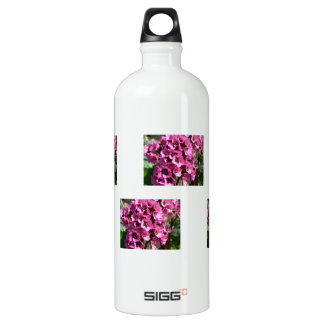 Bergenia Blossom; No Text Water Bottle