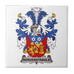 Bergenstrahle Family Crest Tiles