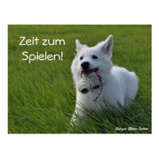 Berger Blanc Suisse tarjeta postal
