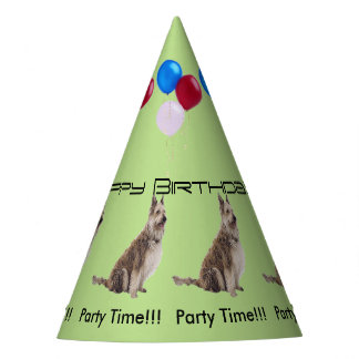 Berger Picard Birthday Party Hat