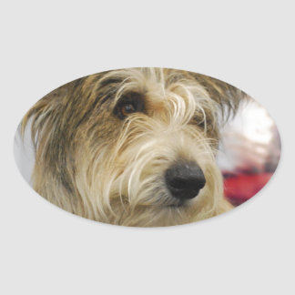 Berger Picard Dog  Stickers