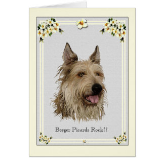 Berger Picard on Grey Dogwood Floral Card