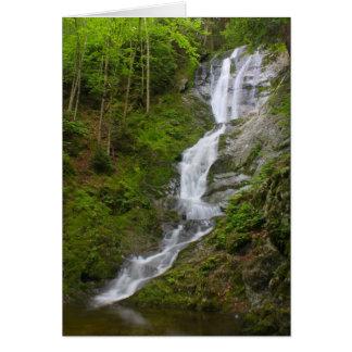 Berkshires Waterfall Ross Brook Falls Savoy Card