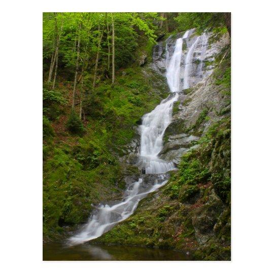 Berkshires Waterfall Ross Brook Falls Savoy Postcard