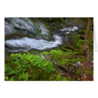 Berkshires Waterfall Ross Brook Falls top view Card