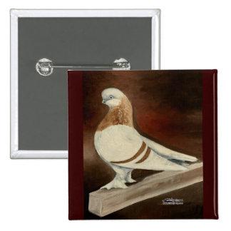 Berliner Shortfaced Pigeon Pinback Button