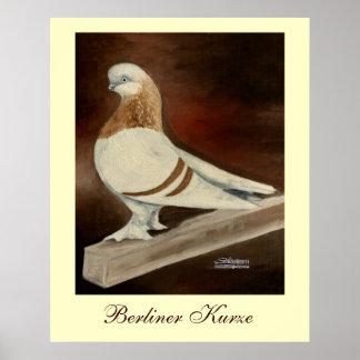 Berliner Shortfaced Pigeon Poster