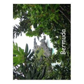Bermuda Beauty Postcard