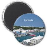 Bermuda Fridge Magnets