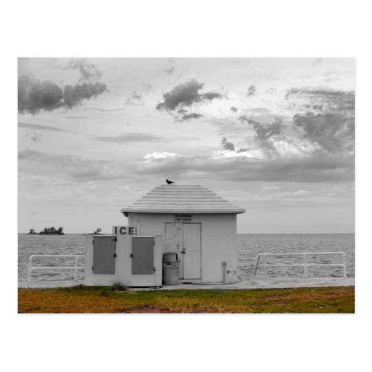 Bermuda gas station postcard