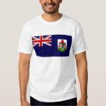 Bermuda Government Ensign Flag Tee Shirt