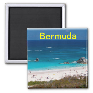 Bermuda magnet