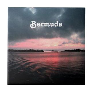 Bermudas Azulejo Cuadrado Pequeño