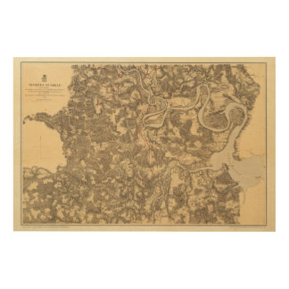Bermudas ciento, Virginia Impresión En Madera