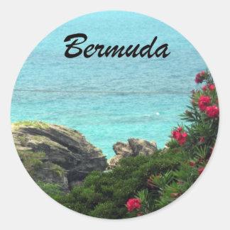 Bermudas Etiqueta Redonda