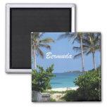 Bermudas Imanes