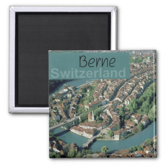 Berne Switzerland Travel Souvenir Fridge Magnet