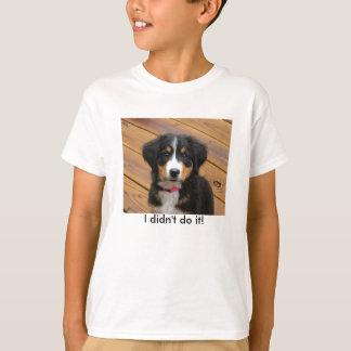 Berner divertido embroma la camiseta