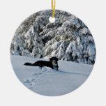 Berner en la nieve ornamento de navidad