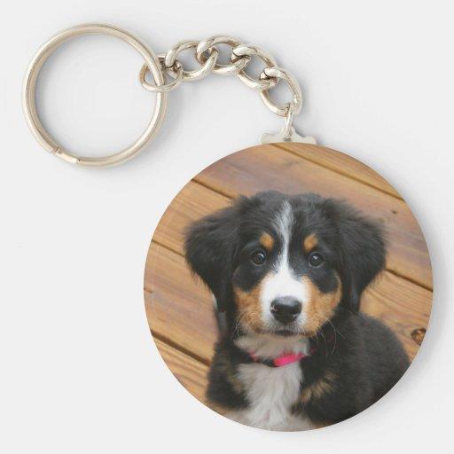 Berner puppy keychain