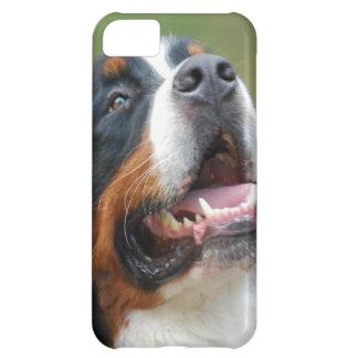 Berner Sennenhund iPhone 5C Case