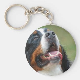 Berner Sennenhund Dog Keychain