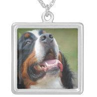 Berner Sennenhund Dog Necklace
