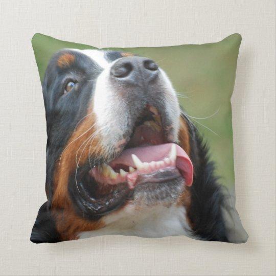Berner Sennenhund Dog Pillow