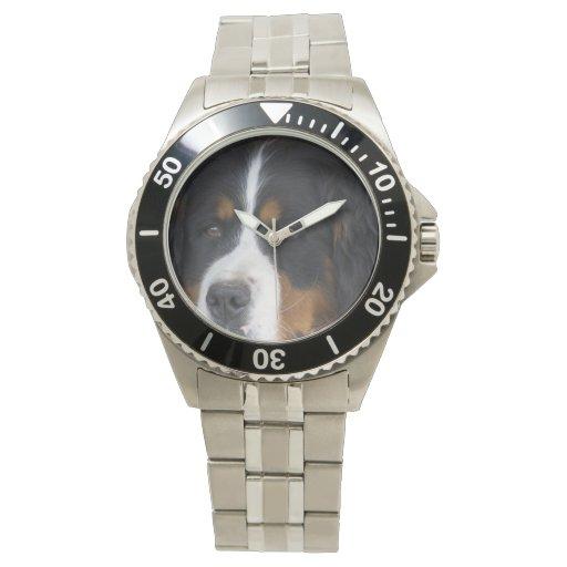 Berner Sennenhund Relojes