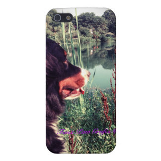 Berner View 2 Case For iPhone SE/5/5s