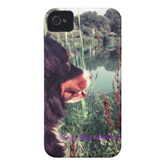 Berner View 2 iPhone 4 Cover