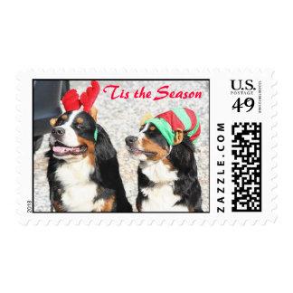 Berners 'Tis the Season Postage