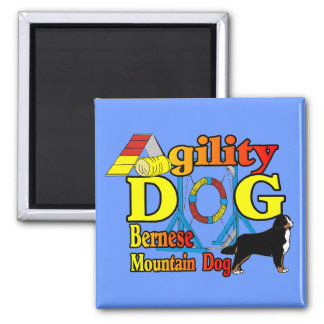 Bernese Agility Gifts 2 Inch Square Magnet