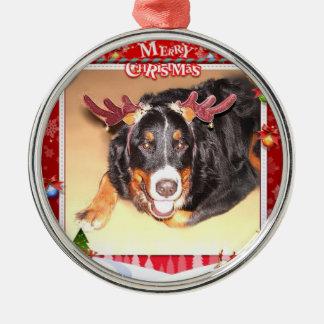 Bernese Christmas Metal Ornament