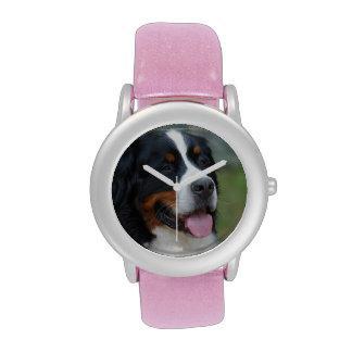 Bernese dulce relojes