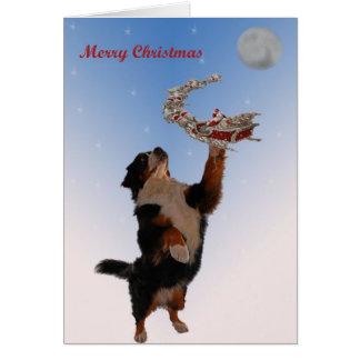 Bernese meeting Christmas Card