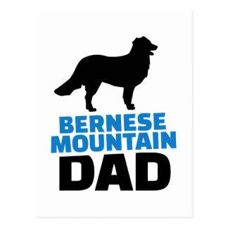 Bernese Mountain Dad Postcard