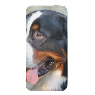 bernese-mountain-dog-10 iPhone 5 pouch