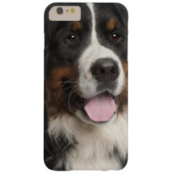 Case-Mate Barely There iPhone 6 Plus Case with Bernese Mountain Dog Phone Cases design