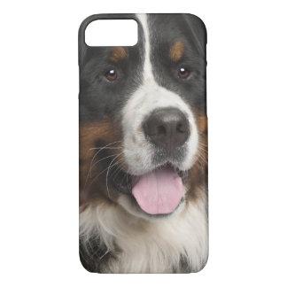 Bernese Mountain Dog (1 year old) iPhone 7 Case
