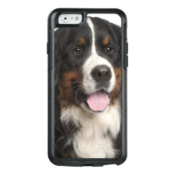 OtterBox Symmetry iPhone 6/6s Case with Bernese Mountain Dog Phone Cases design